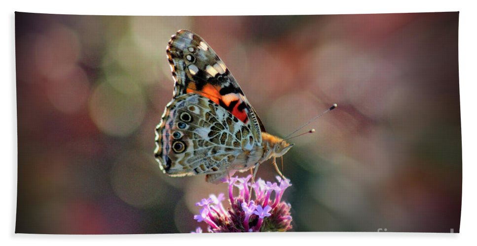 Butterfly Beach Towel featuring the photograph American Painted Lady Butterfly 2014 by Karen Adams