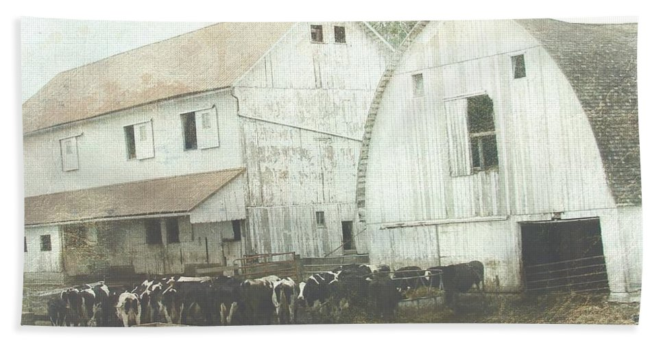 Kalona Beach Towel featuring the digital art Amish Dairy by Cassie Peters
