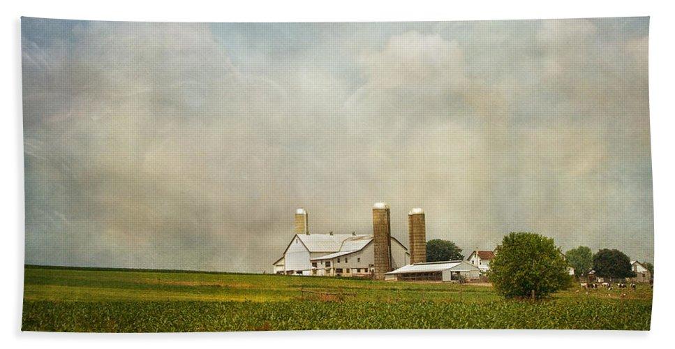 Rural Beach Towel featuring the photograph Amish Farmland by Kim Hojnacki