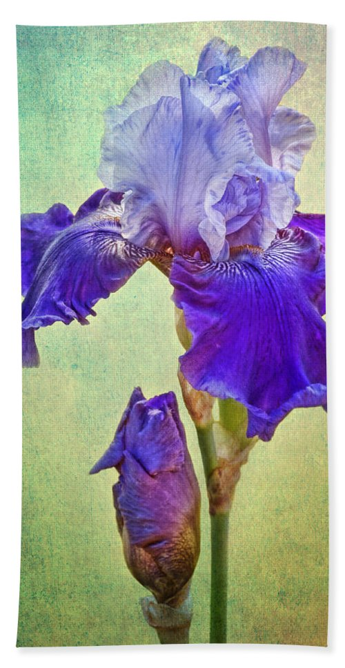 Bearded Iris Beach Towel featuring the photograph And One To Come by Nikolyn McDonald