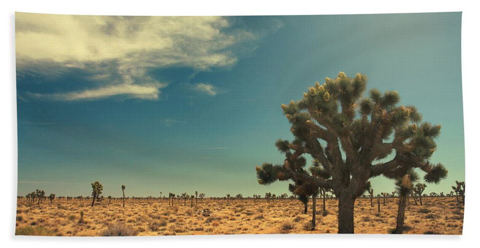 Joshua Tree National Park Beach Towel featuring the photograph And You Give Yourself Away by Laurie Search