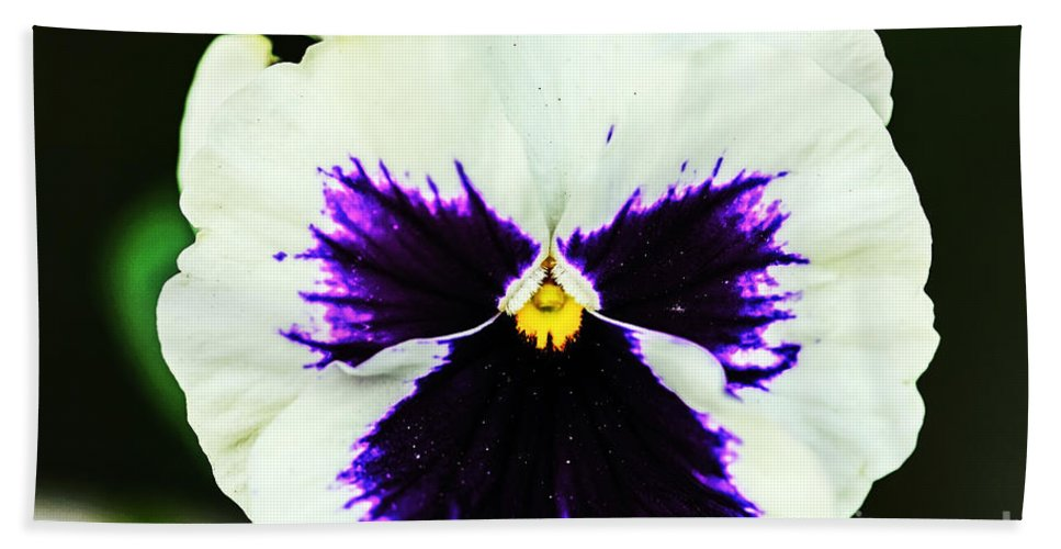 Nature Beach Towel featuring the photograph Angel In The Flower by Elvis Vaughn
