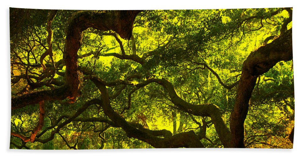 Angel Oak Beach Towel featuring the photograph Angel Oak Limbs Crop 40 by Susanne Van Hulst