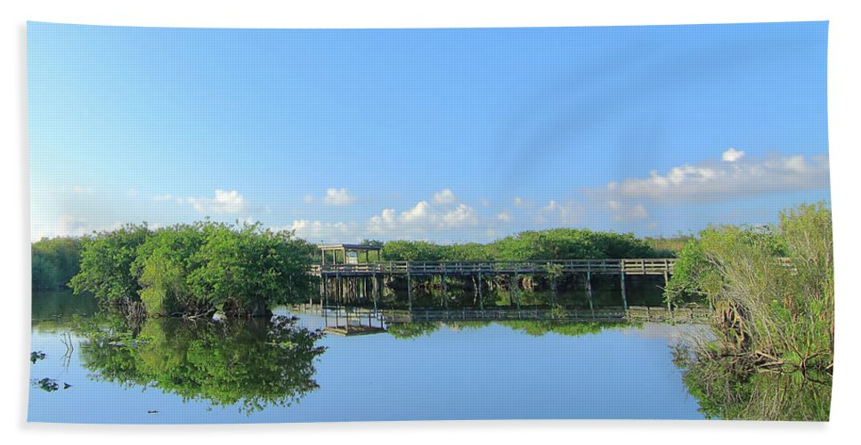 Boardwalk Beach Towel featuring the photograph Anhinga Trail by Rudy Umans