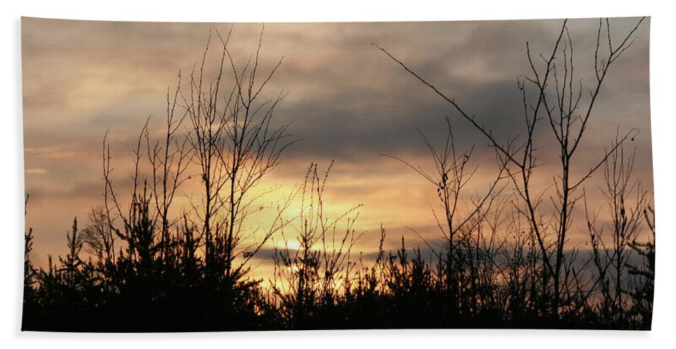 Sunset Dusk Trees Forest Sky Clouds Nature Wild Area Beach Towel featuring the photograph Another Dusk by Andrea Lawrence