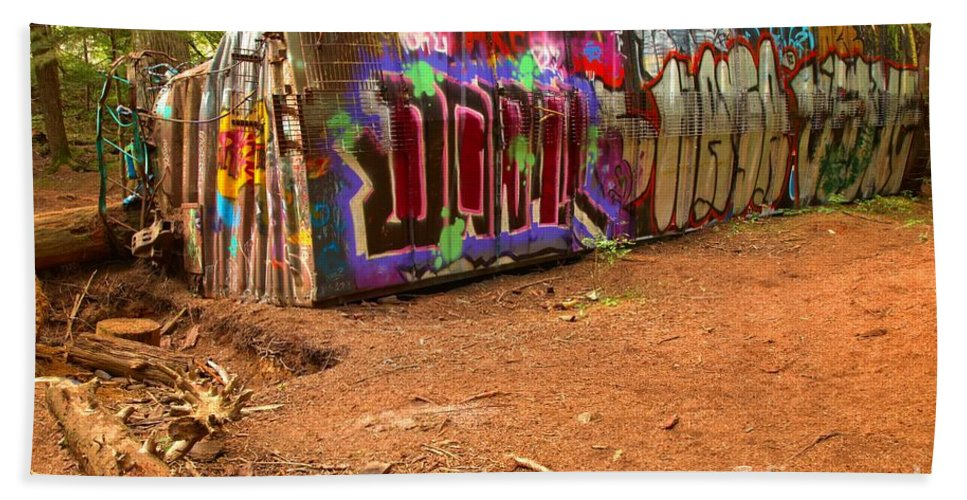 Train Wreck Beach Towel featuring the photograph Art Along The Cheakamus River by Adam Jewell