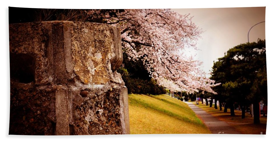 Cherry Beach Towel featuring the photograph Atsugi Pillbox Walk  A1 by Jay Mann