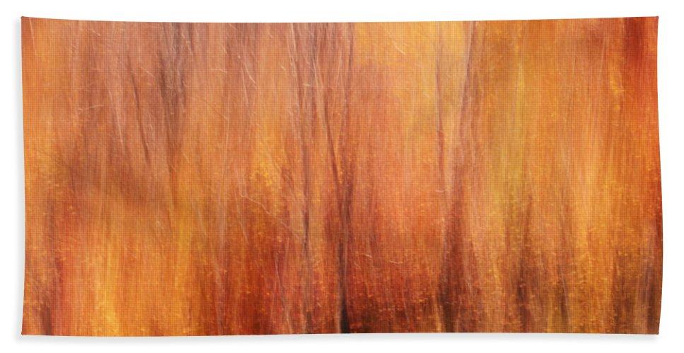Autumn Beach Towel featuring the photograph Autumn Canvas by Aimelle