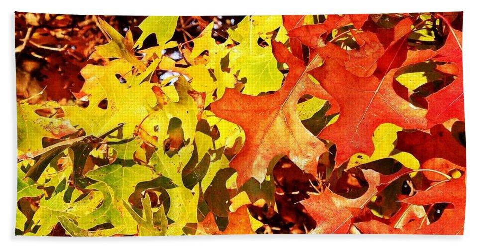 Autumn Beach Towel featuring the photograph Autumn Celebration by Christian Mattison