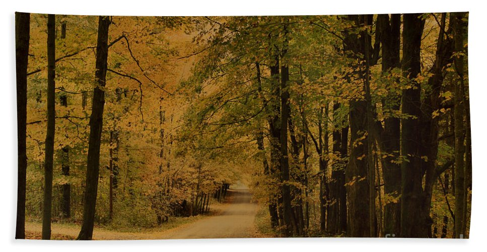 Country Road Beach Towel featuring the photograph Autumn Country Road by Deborah Benoit