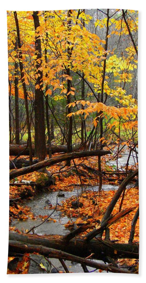 Autumn Beach Towel featuring the photograph Autumn Creek In The Rain by Rodney Lee Williams