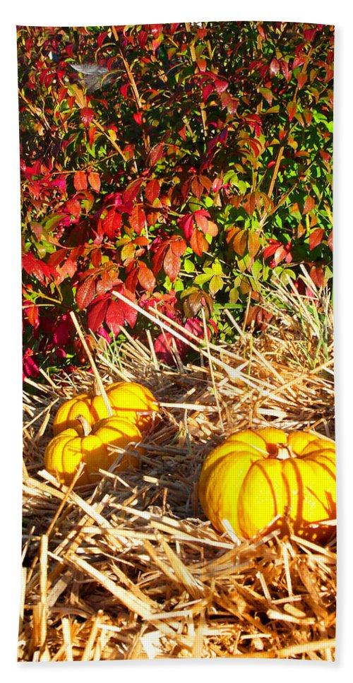 Plants Beach Towel featuring the photograph Autumn Garden by Duane McCullough
