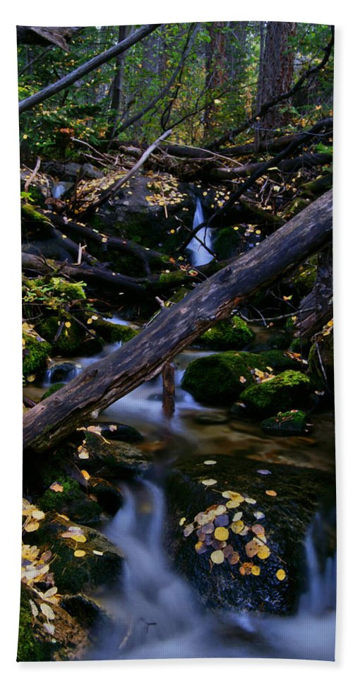 Jeremy Rhoades Beach Towel featuring the photograph Autumn Greens by Jeremy Rhoades