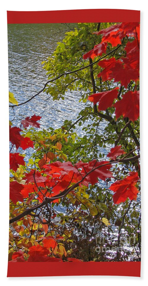 Autumn Beach Sheet featuring the photograph Autumn Lake by Ann Horn