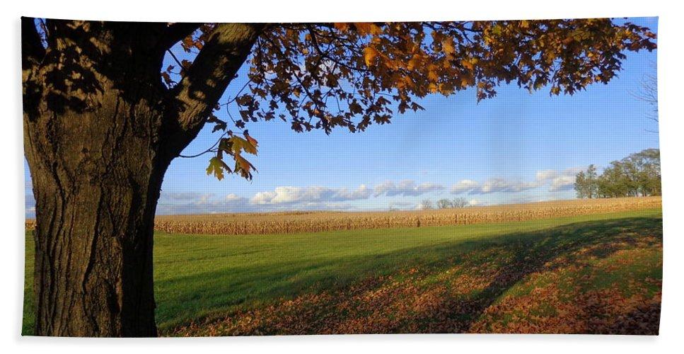 Joseph Skompski Beach Towel featuring the photograph Autumn Landscape by Joseph Skompski