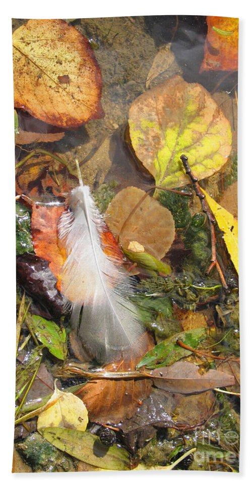 Autumn Beach Towel featuring the photograph Autumn Leavings by Ann Horn