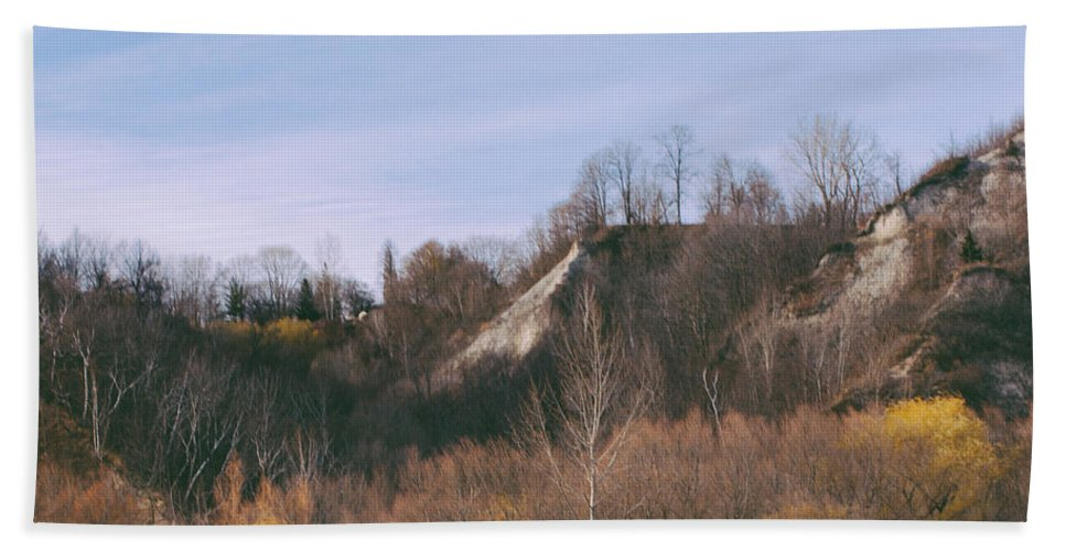 Toronto Beach Towel featuring the photograph Autumn Remains In January by Kyra Savolainen