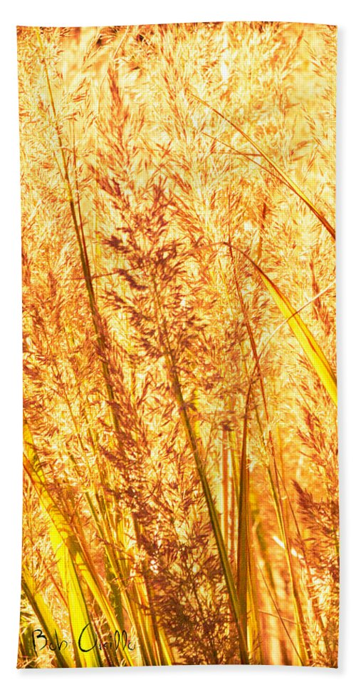 Grass Beach Towel featuring the photograph Autumns Passion by Bob Orsillo
