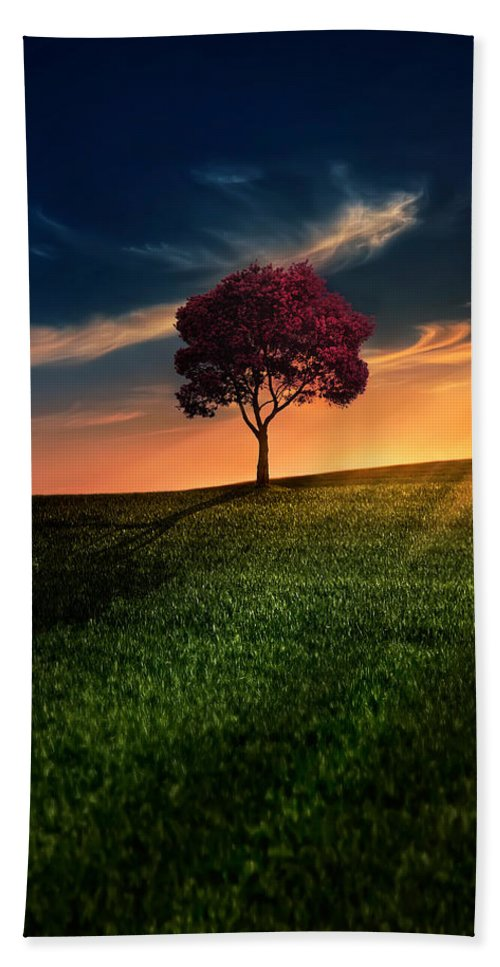 Agriculture Beach Towel featuring the photograph Awesome Solitude by Bess Hamiti