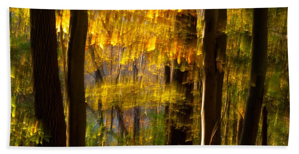 Ohio Beach Towel featuring the photograph Backlit Leaves Abstract by Kenneth Sponsler