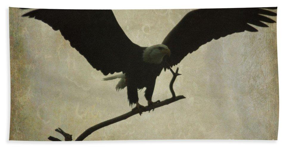 Bald Eagle Beach Towel featuring the photograph Bald Eagle Texture by Sharon Elliott