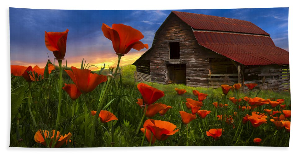 American Beach Towel featuring the photograph Barn In Poppies by Debra and Dave Vanderlaan