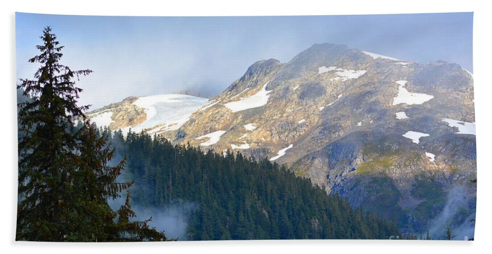 Fish Creek Beach Towel featuring the photograph Bears With A View by Deanna Cagle