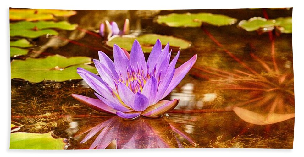 Reflection Photograph Beach Towel featuring the photograph Beautiful Reflections by Kristina Deane