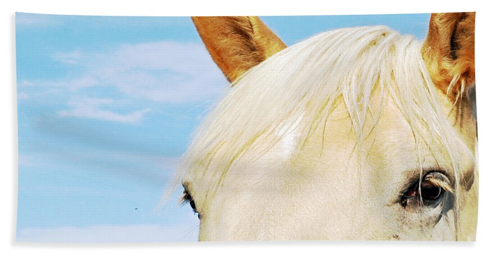 Horse Beach Towel featuring the photograph Beauty by Molly McPherson