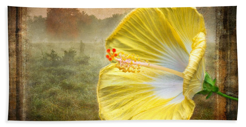 Hibiscus Beach Towel featuring the photograph Beauty Served Two Ways by Garvin Hunter