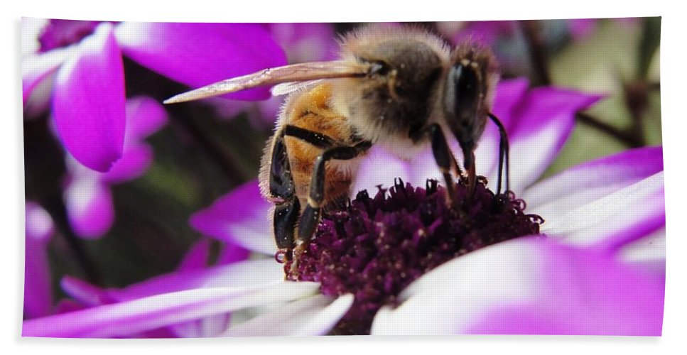 Bee Beach Towel featuring the photograph Bee Happy by Norma Brock