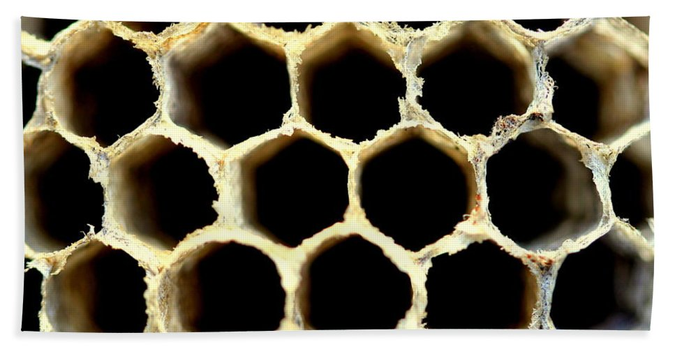 Hive Beach Towel featuring the photograph Bee Hive by Kenny Glotfelty
