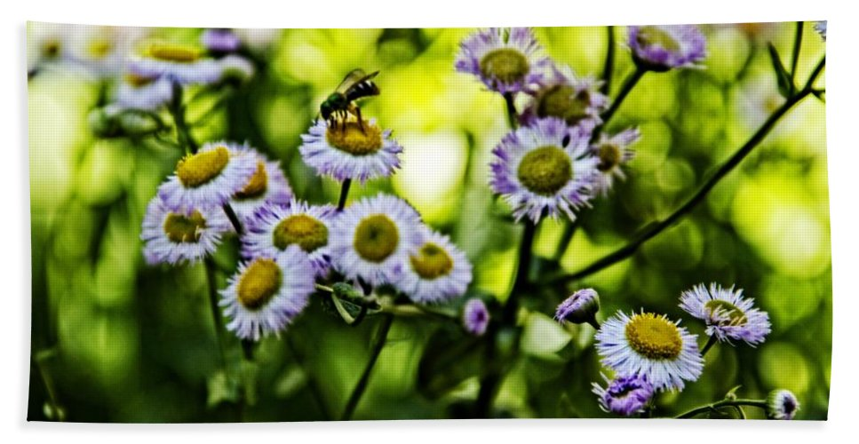 Flowers Beach Towel featuring the photograph Bee On Flower by Alice Gipson