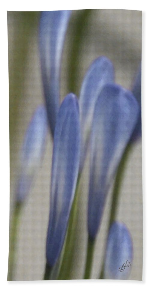 African Lily Beach Towel featuring the photograph Before - Lily Of The Nile by Ben and Raisa Gertsberg