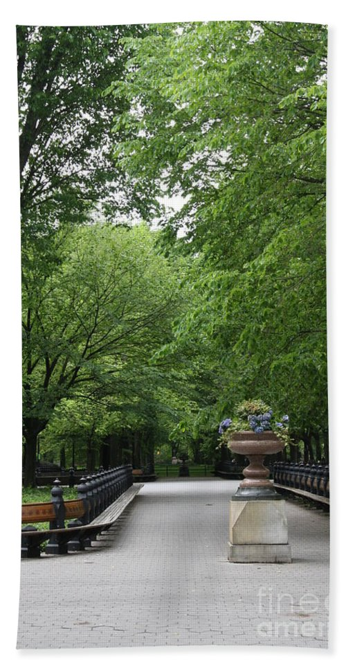 Park Beach Towel featuring the photograph Bench Rows In Central Park Nyc by Christiane Schulze Art And Photography