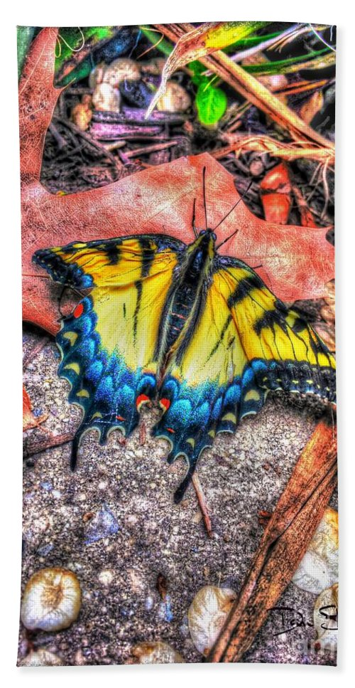 Butterfly Beach Towel featuring the photograph Beyond Chrysalis-tiger Swallowtail by Dan Stone