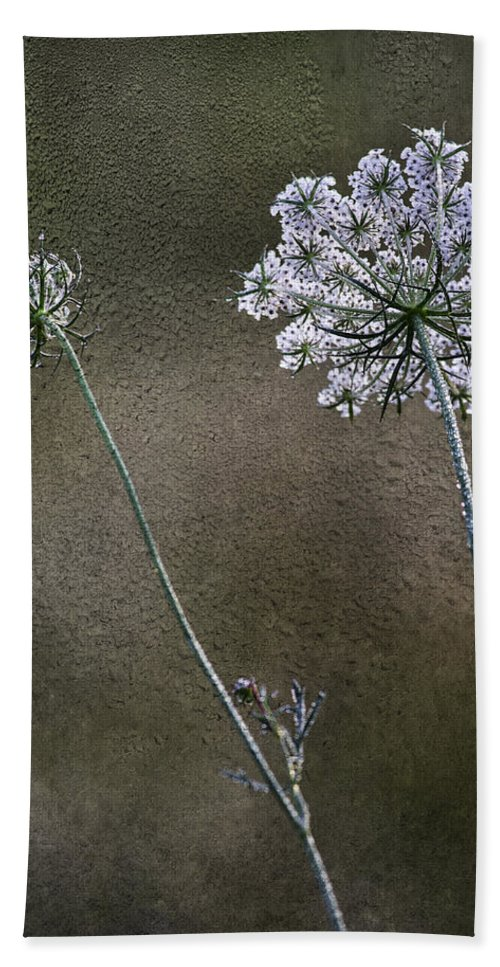 Dew Beach Towel featuring the photograph Beyond The Dew by Dale Kincaid