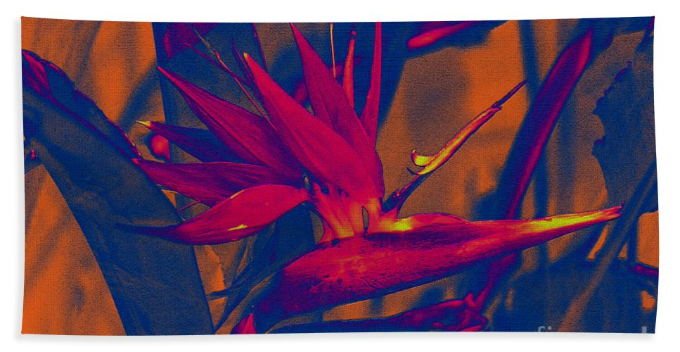 Bird Of Paradise Beach Towel featuring the photograph Bird Of Paradise Flower by Susanne Van Hulst