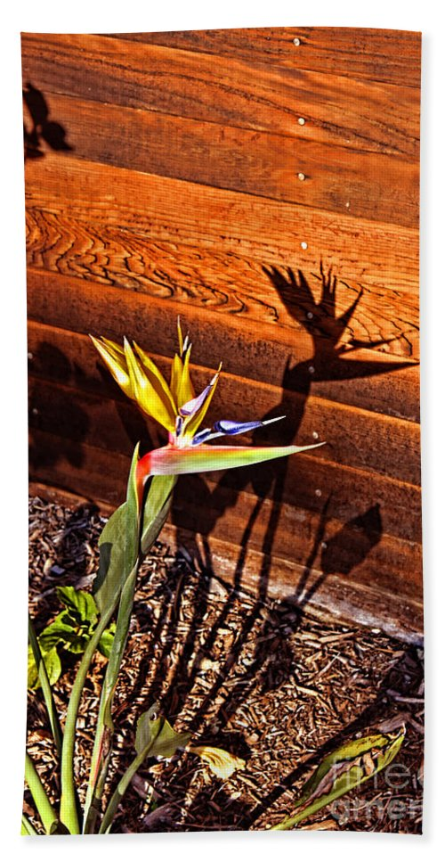 Bird Of Paradise Beach Towel featuring the photograph Bird Of Paradise by Tommy Anderson
