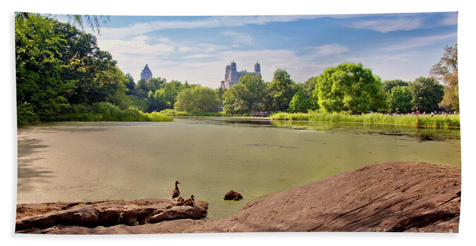 Duck Beach Towel featuring the photograph Birds Eye View by Madeline Ellis
