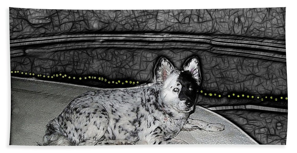 Black Beach Towel featuring the digital art Black And White Dog by Joan Minchak