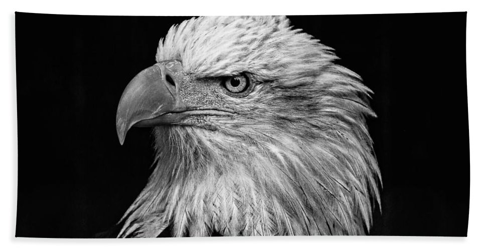Black And White Eagle Beach Towel featuring the photograph Black And White Eagle by Wes and Dotty Weber