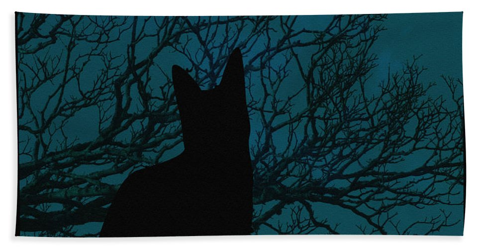 Black Cat In The Moonlight Blue Beach Towel featuring the photograph Black Cat In The Moonlight Blue by Barbara Griffin