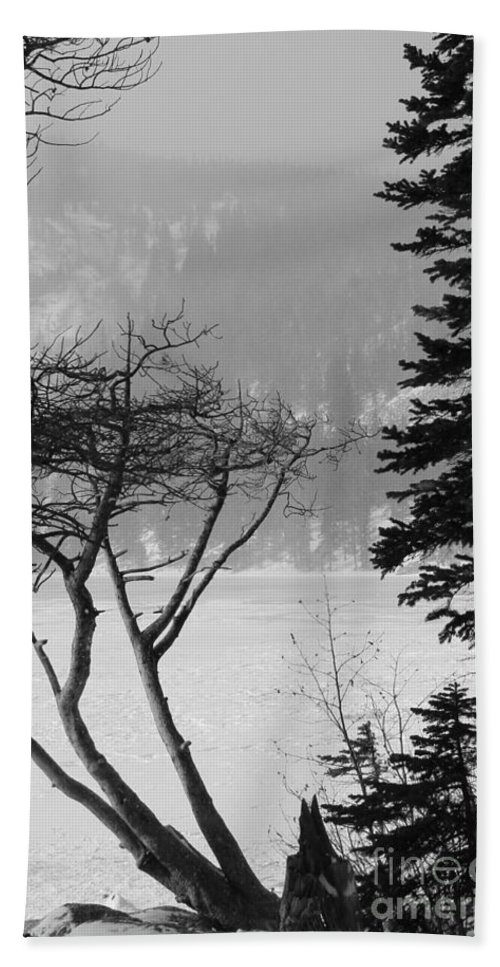 Snow Beach Towel featuring the photograph Blizzard by Tonya Hance