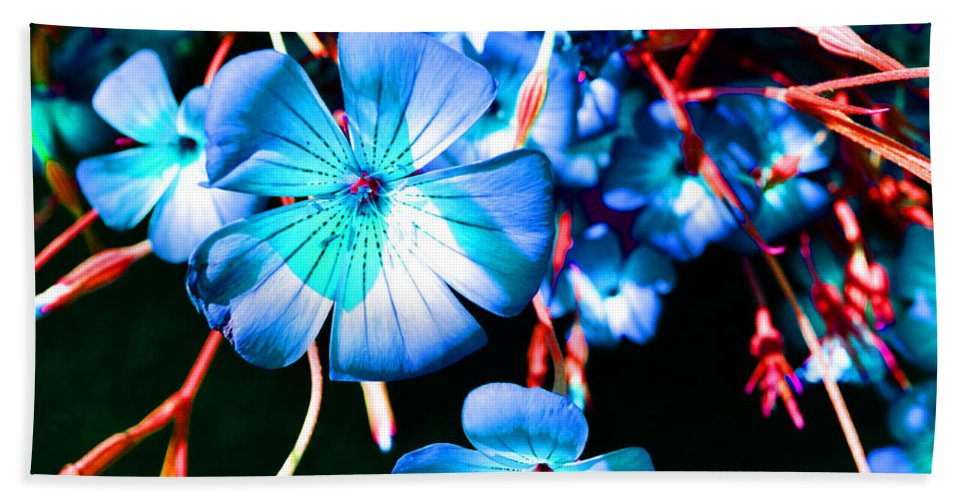 Flowers Beach Towel featuring the photograph Blue Tint Flowers by Holly Blunkall