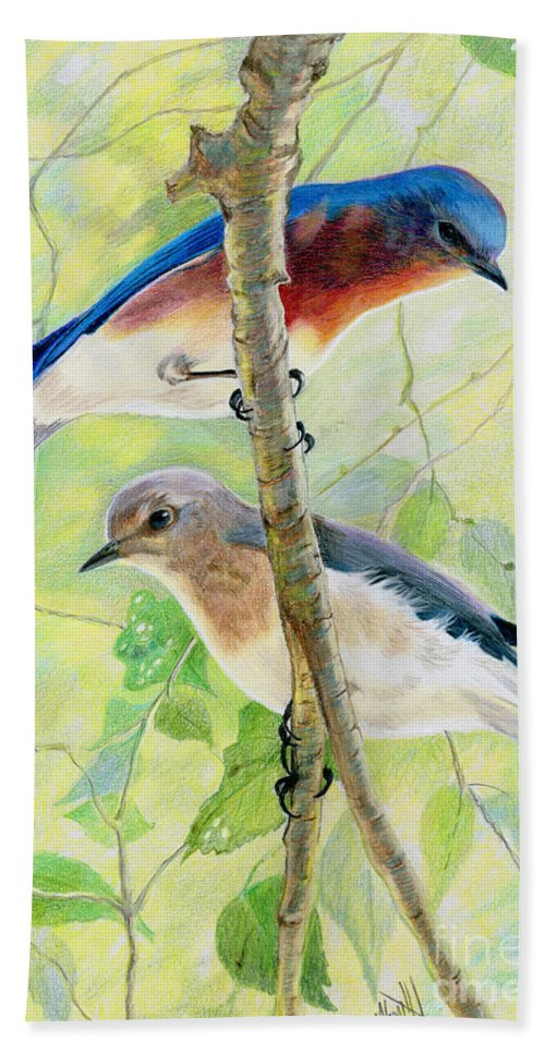 Bluebirds Beach Towel featuring the drawing Bluebird Pair by Marilyn Smith