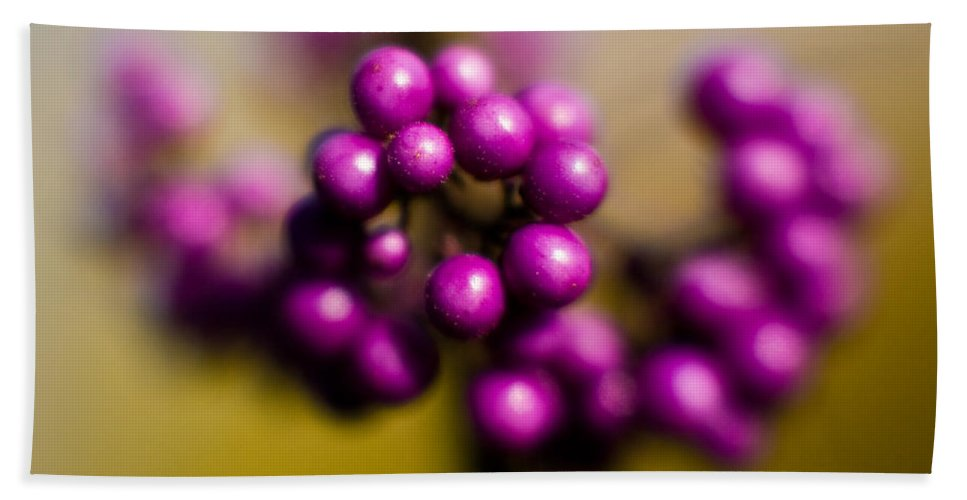 Beauty Berries Beach Towel featuring the photograph Blur Berries by Mike Reid