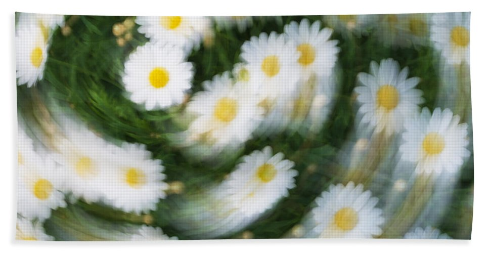 Daisy Beach Towel featuring the photograph Blurred Daisies by Chevy Fleet