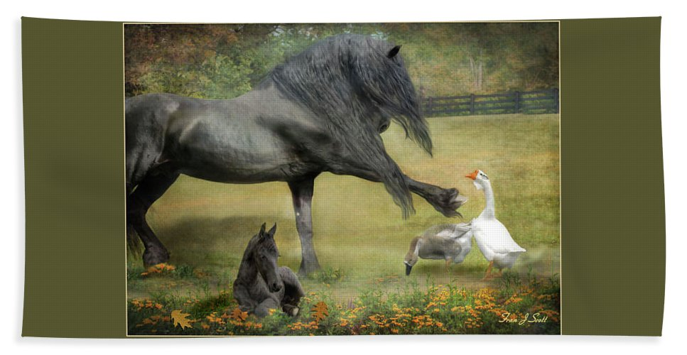 Friesian Horses Beach Towel featuring the photograph Border Patrol by Fran J Scott