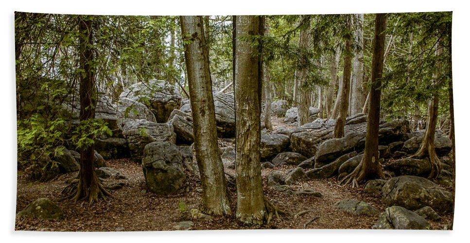 Boulders Beach Towel featuring the photograph Boulder Woods by Ronald Grogan